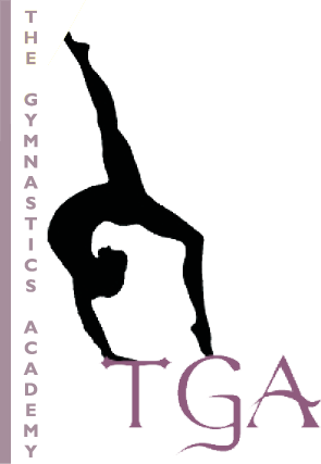 the gymnastics academy logo